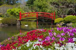 JapaneseGardensToowo1.jpg - small